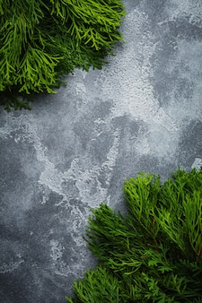 Christmas surface thuja branchon light concrete old surface table