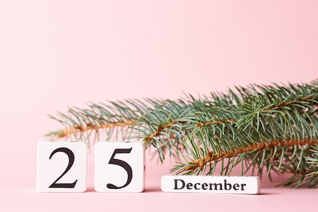 Christmas tree branch and calendar with date 25 december on pink