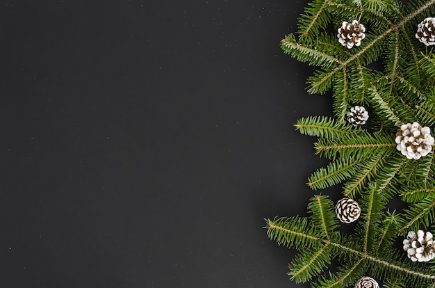 Christmas tree branch white hand painted pine cone on black background, banner mock-up xma