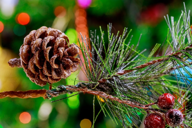 Christmas tree branch with pine cones and red berry
