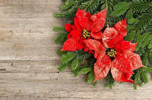 나무 배경에 붉은 포인세티아 꽃과 함께 크리스마스 트리 분기