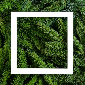 Christmas tree branches background. christmas frame. holiday's background happy new year. christmas tree frame. design for banner, post
