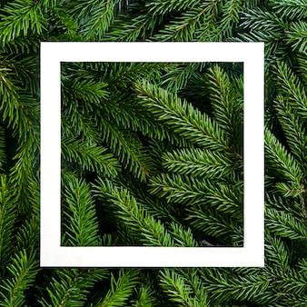 クリスマスツリーの枝の背景。クリスマスフレーム。休日の背景新年あけましておめでとうございます。クリスマスツリーのフレーム。バナー、ポストのデザイン