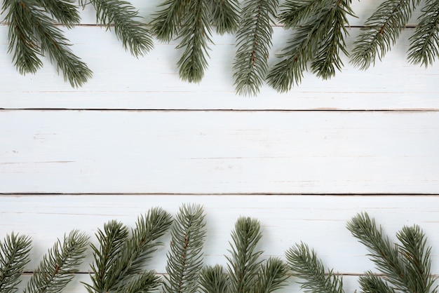 Christmas tree branches frame background