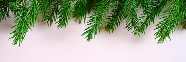 ピンクの背景のクリスマスツリーの枝フレーム