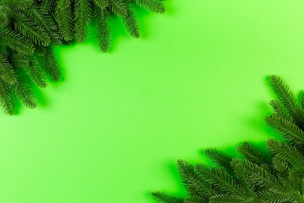 Christmas tree branches on green table