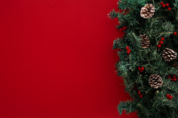 Christmas tree branches on a red background