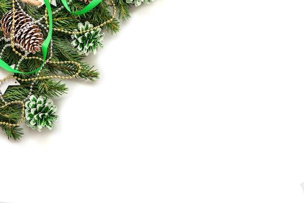 Ветви елки с шишками на белом фоне.