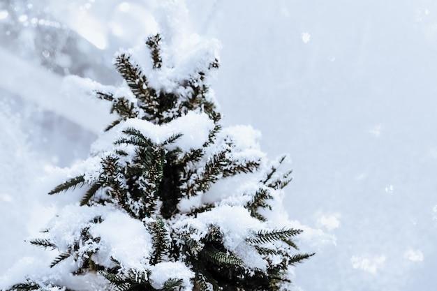 白い光沢のある雪で覆われたクリスマスツリー。クリスマス、冬、新年2022年。魔法の雰囲気
