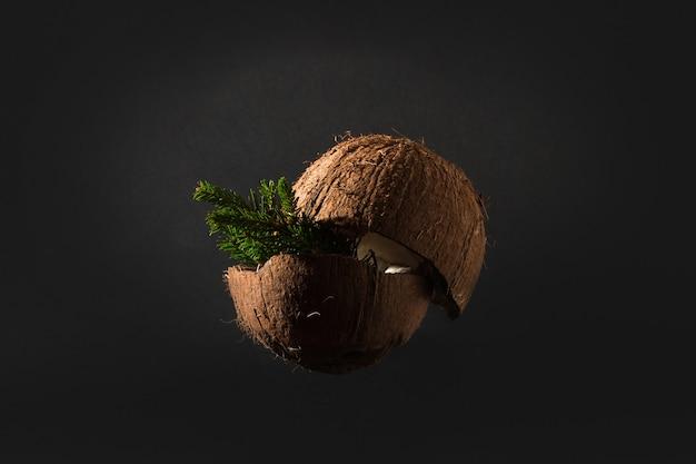 ココナッツのクリスマスツリー、暖かい国の年末年始の創造的なコンセプト