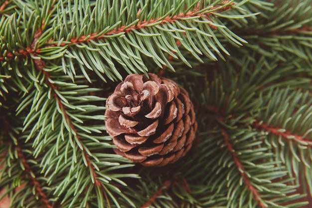 Christmas tree and lump. winter macro photo