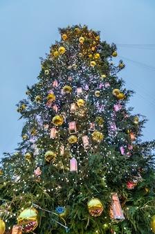 キエフのソフィア広場のクリスマスツリー