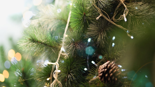 Christmas tree with beautiful lights.