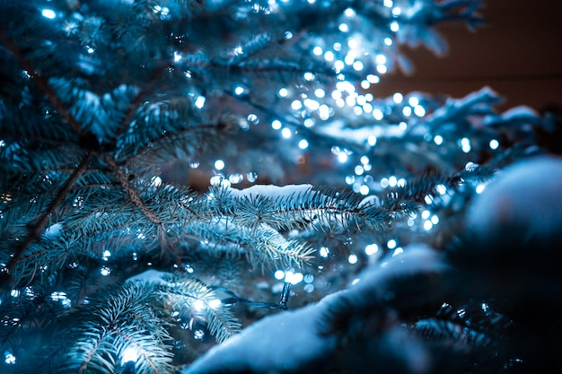 Рождественская елка с шишками на городской улице освещается с гирляндой.