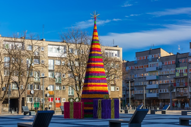 Christmas tree in wroclaw, poland