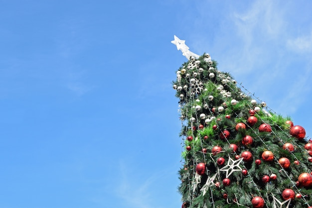 Christmas tree Free Photo