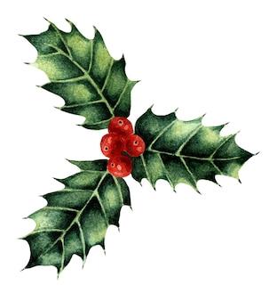 クリスマスの水彩イラストホリー3枚の葉とベリーの束伝統的な新年