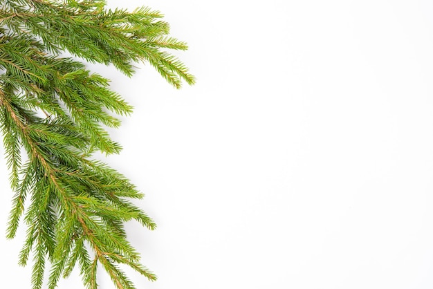 가문비나무 가지가 있는 크리스마스 흰색 배경, 평평한 평지, 위쪽 전망, 복사 공간