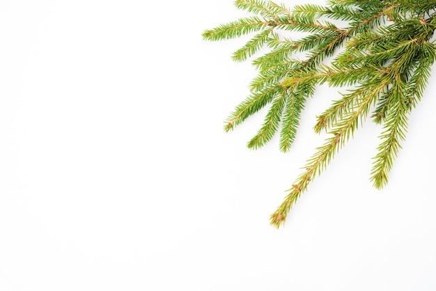 가문비나무 가지가 있는 크리스마스 흰색 배경, 평평한 평지, 위쪽 전망