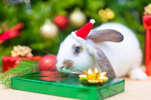 빨간 모자에 크리스마스 하얀 토끼입니다. 녹색 배경에 빨간 산타 클로스 의상을 입은 토끼 - 동물, 애완 동물, 새해 개념. 카피스페이스. 2022년