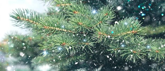 Рождественский зимний фон. рождественская елка со снегом и огнями боке, праздничный фон