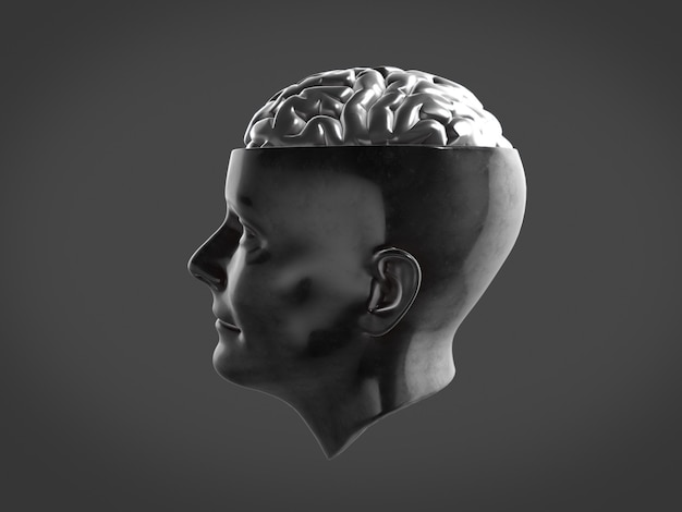 Chrome brain in metal head ,abstract brain.3d rendering