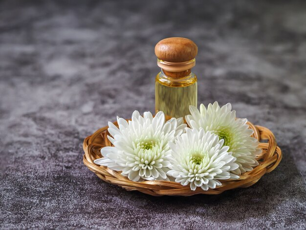 Chrysanthemum essential oil, spa, beauty, skincare and cosmetology concept