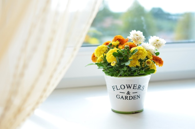 창에 세라믹 냄비에 국화 꽃 꽃다발