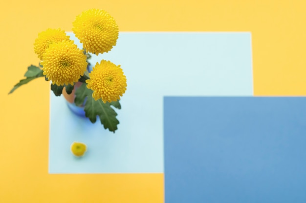 着色された背景の上に花瓶の菊の花