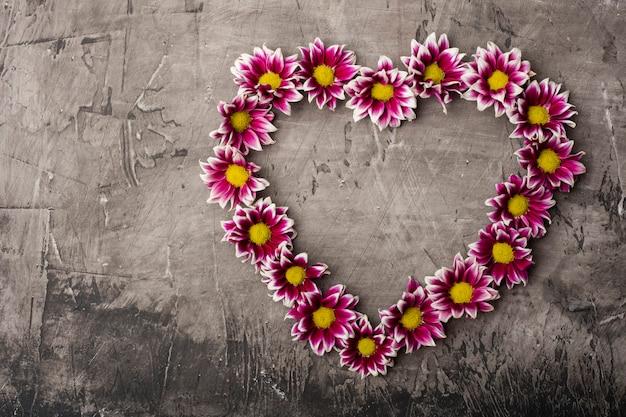 Хризантема в форме сердца с копией пространства на темном фоне