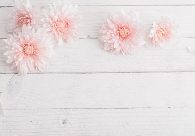 白い木製の壁に菊