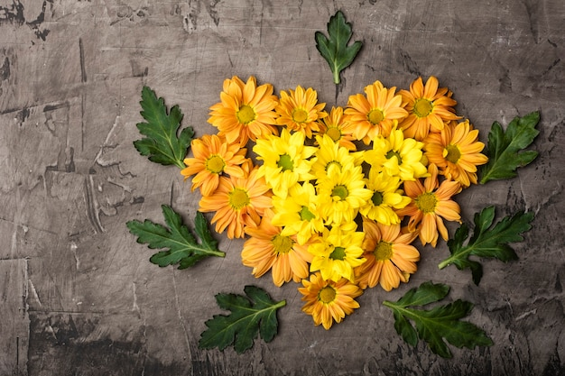Chrysanthemum in the shape of heart with copy space on a dark background