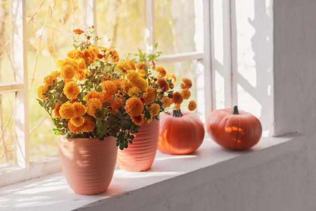 Хризантемы и тыквы на старом белом подоконнике