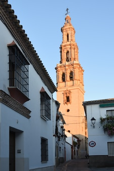 Church bell tower of san gil,  ecija, seville province, andalusia, spain