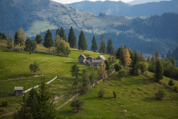 The church from sucevita monastery in the bucovina romania