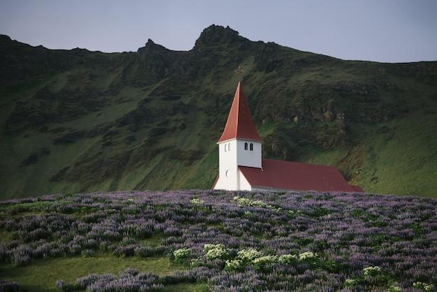 Церковь в городе вик