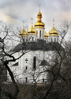 Church with golden domes in the park