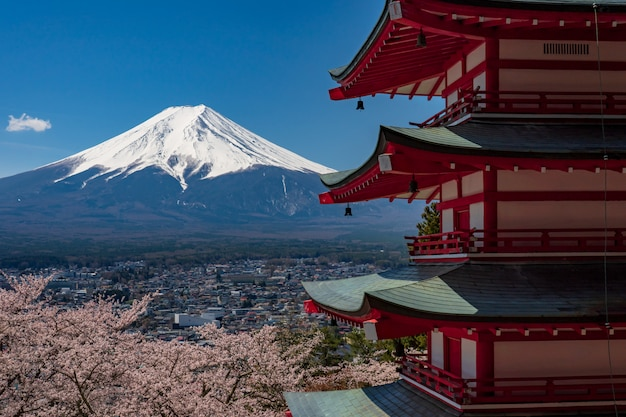 Chureito pagoda and mt. fuji in the spring time with cherry blossoms at fujiyoshida, japan.