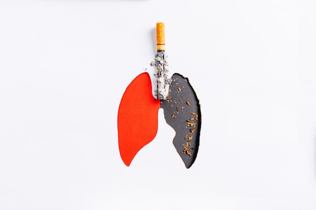 Cigarette burning the lungs paper, compare bad lungs and good lungs, copy space,stop smoking concept