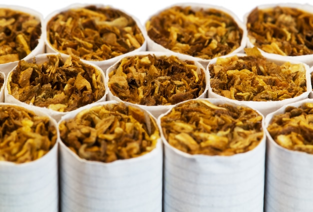 Cigarettes in a pack close up macro