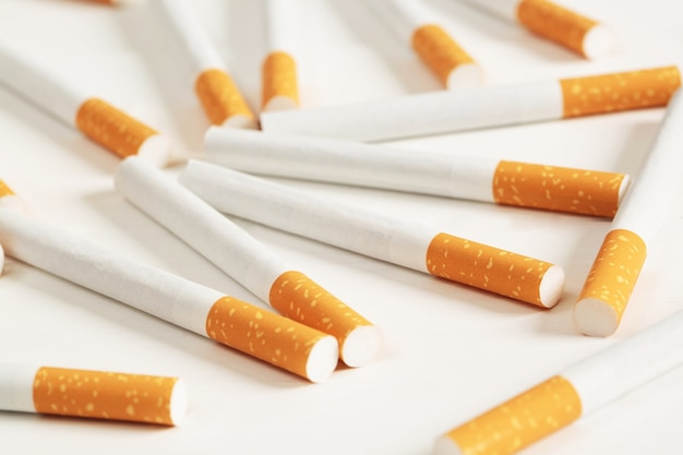 Cigarettes placed on a white background