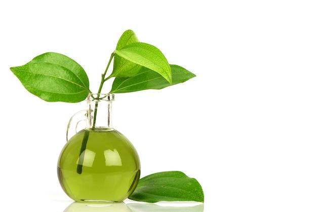 白い表面に分離された油で抽出されたシナモングリーンの葉。
