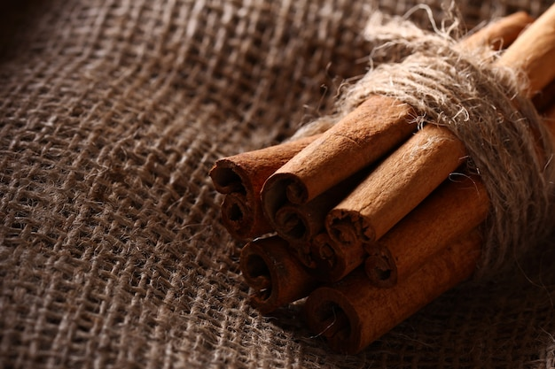 Cinnamon sticks on sack cloth