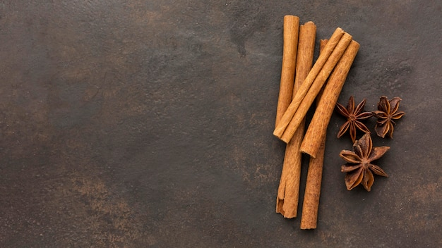 Cinnamon sticks with copy-space