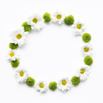 Circle from daisies and succulents