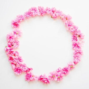 Circle from pink flowers