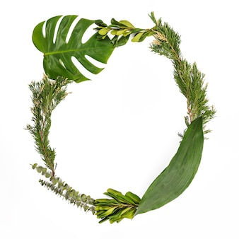 Circle from various plant leaves