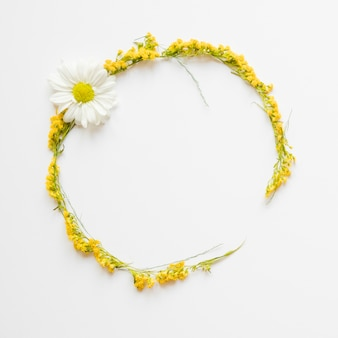 Circle from yellow flowers and chamomile