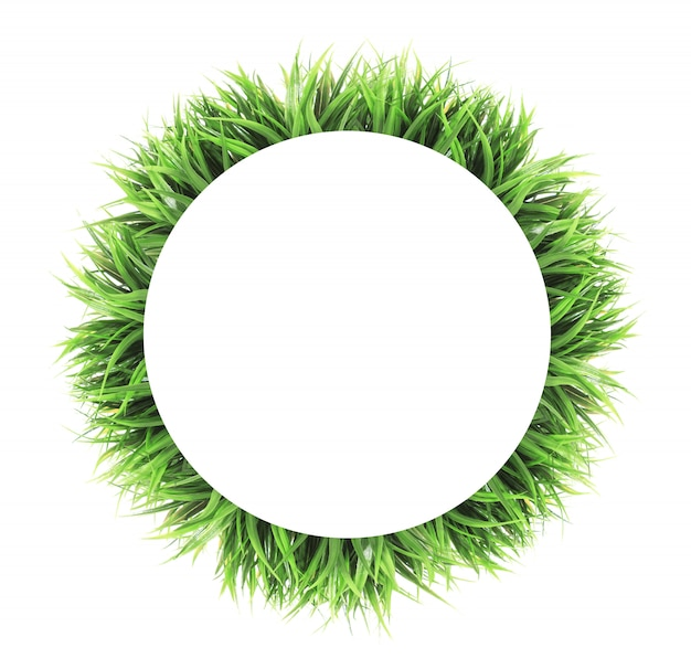 Circle grass frame isolated on white