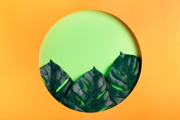 Circle made of paper with leaves inside